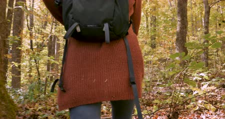 rejuvenescimento : Young healthy woman walking or hiking through the woods with a small backpack
