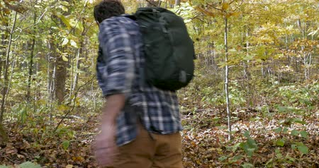 recreational park : Camera follows a young healthy man with a backpack walking or hiking through the woods - stabilized shot