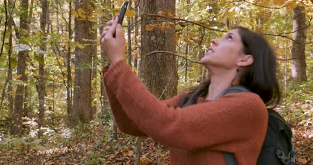 betrokken : Angry frustrated woman unable to get cellular service on her smart phone while walking in the woods alone Stockvideo
