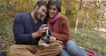 Бостон : Portrait of a happy man, woman, and small dog Boston Terrier in a park during autumn smiling and looking at the camera Стоковые видеозаписи