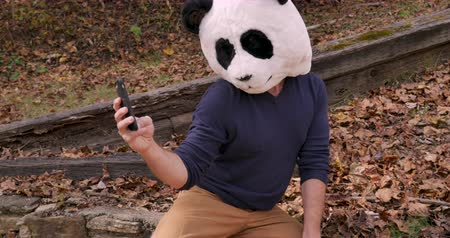 panda : Man wearing a panda head mask taking selfies with a mobile phone and looking at the photos on his smart phone Stock Footage