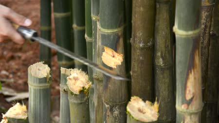 bıçak : Cut the bamboo with a knife