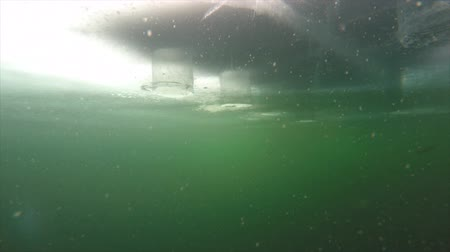otcovství : 4k shot of fish being reeled in underwater beneath ice