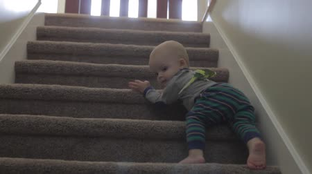 papuga : a little boy trying to go down the stairs with a parakeet on him