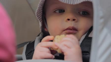 sanduíche : a baby in a backpack carrier at zions national park Stock Footage