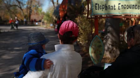 captivity : a family enjoying a day at the zoo Stock Footage