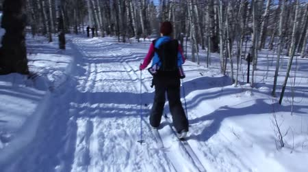 narciarz : a woman and baby cross country skiing across the snow