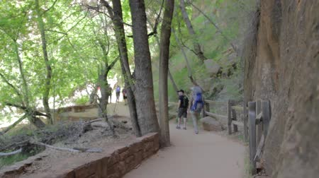 стены : a young family hiking in the zion national park