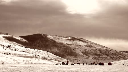 broca : Anglers ice fishing on reservoir Stock Footage