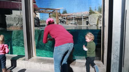 chapéu : Children at zoo aquarium