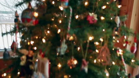 holidays : a steadicam shot of a christmas tree with presents beneath
