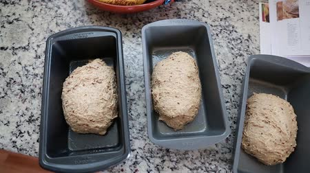 хлеб : dough rising in bread pans
