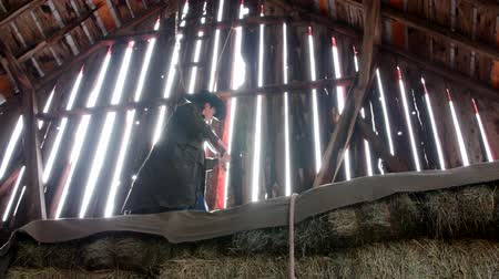 istálló : Cowboy plays an old fiddle in barn rafters for barn dance