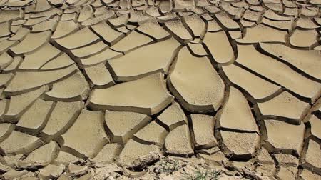 rachaduras : Cracked desert floor