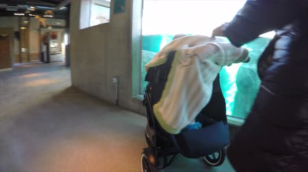 толчок : a mother pushing a stroller with her toddler and baby through the zoo