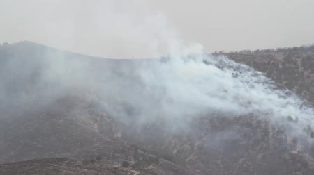 bush fire : Fire Burning on Mountainside Stock Footage