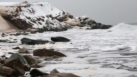 cape breton : foam in a rough winter sea