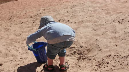 klapki : Little boy filling bucket with sand on beach Wideo