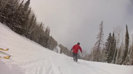 narciarz : man skiing on mountain in slow motion Wideo