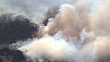dzsungel : Huge Forest Fire Burning on the Mountain Stock mozgókép