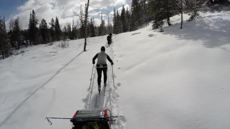 buty : Nordik skiing through a forest pulling a trailer time lapse