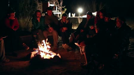 égés : family sits around a campfire at night while camping in the desert