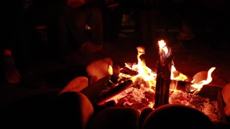 şenlik ateşi : people sitting around a campfire Stok Video