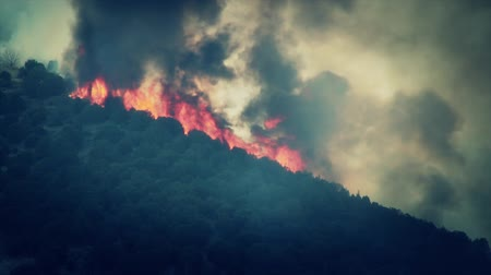 hamu : Raging Forest Fire on the Mountain Stock mozgókép