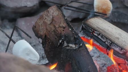kamp ateşi : Roasting marshmallows over hot coals