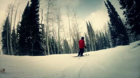 narciarz : slow motion downhill skiing through forrest