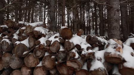 machado : snow covered fire wood pile