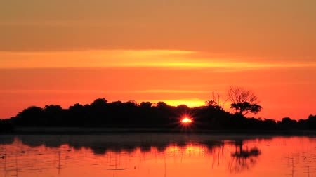 kamış : Sunset in the Okavango