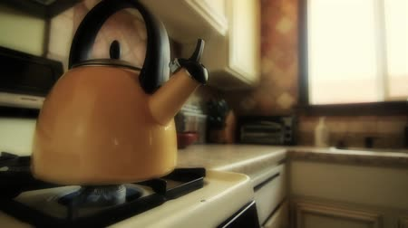 kabine : Tea Kettle on Stovetop