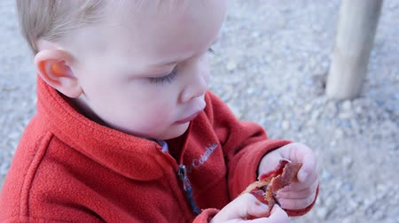 cozinhar : A toddler boy eats bacon for breakfast while camping Stock Footage