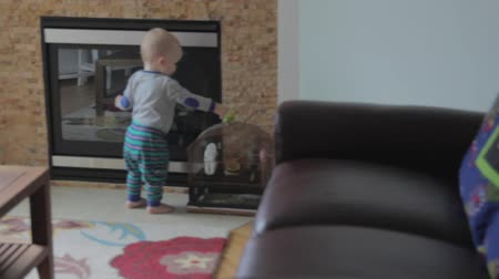 papuga : a little toddler boy walking through his house Wideo