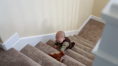 primaz : a toddler plays on the stairs with a stuffed monkey Vídeos