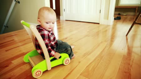 zabawka : a little baby boy playing with a push toy