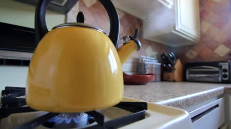 fogão : Tea Kettle on Stovetop
