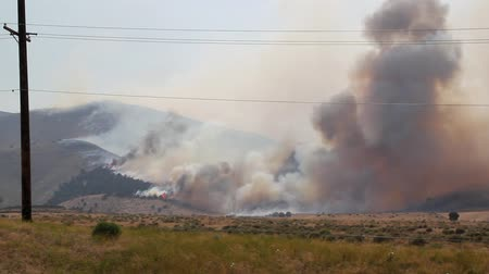 lutador : Wildfire Spreading Over Mountain Stock Footage