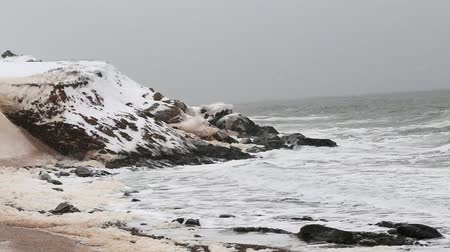 cape breton : winter coastline in snow storm