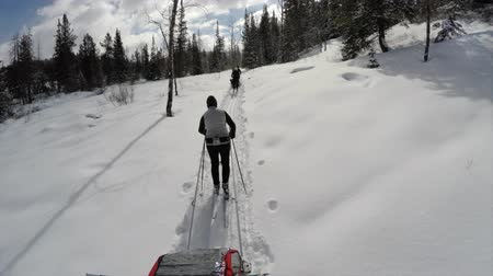 buty : Cross country skiing in the beautiful snowy mountains of Utah shot with a gimbal for stabilization Wideo