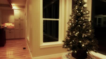 ozdobnik : a small christmas tree in a house Wideo