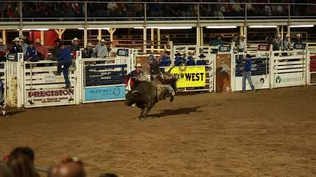 арена : bull rider in slow motion at a prca professional rodeo