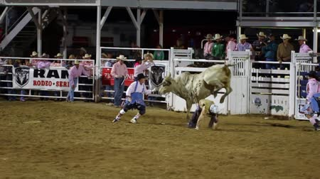 chapéu : Cowboys ride huge bucking bulls in a small town PRCA rodeo. Vídeos