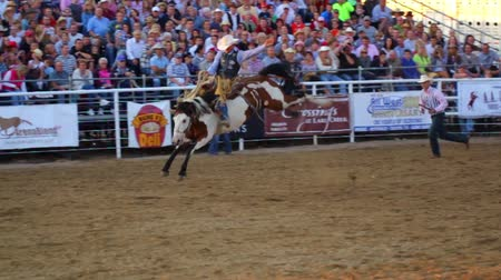 Cowboys ride saddleback in a national PRCA rodeo