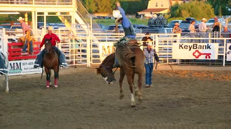 арена : A cowboy riding a horse at the rodeo
