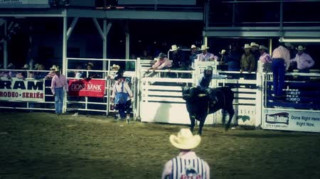 ludzik : Cowboys ride huge bucking bulls in a small town PRCA rodeo. Wideo