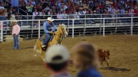 арена : Cowboys calf roping at a national PRCA rodeo