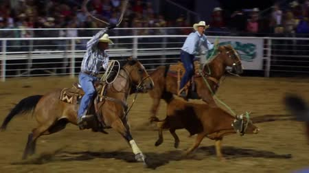cowboy hut : Cowboys Team Roping auf nationaler PRCA Rodeo