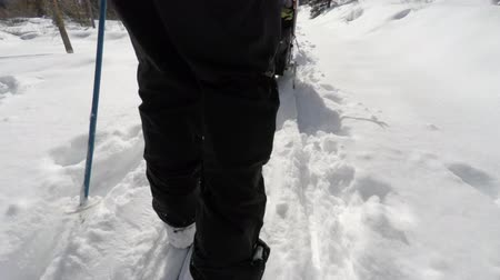 narciarz : Cross country skiing in the beautiful snowy mountains of Utah shot with a gimbal for stabilization Wideo